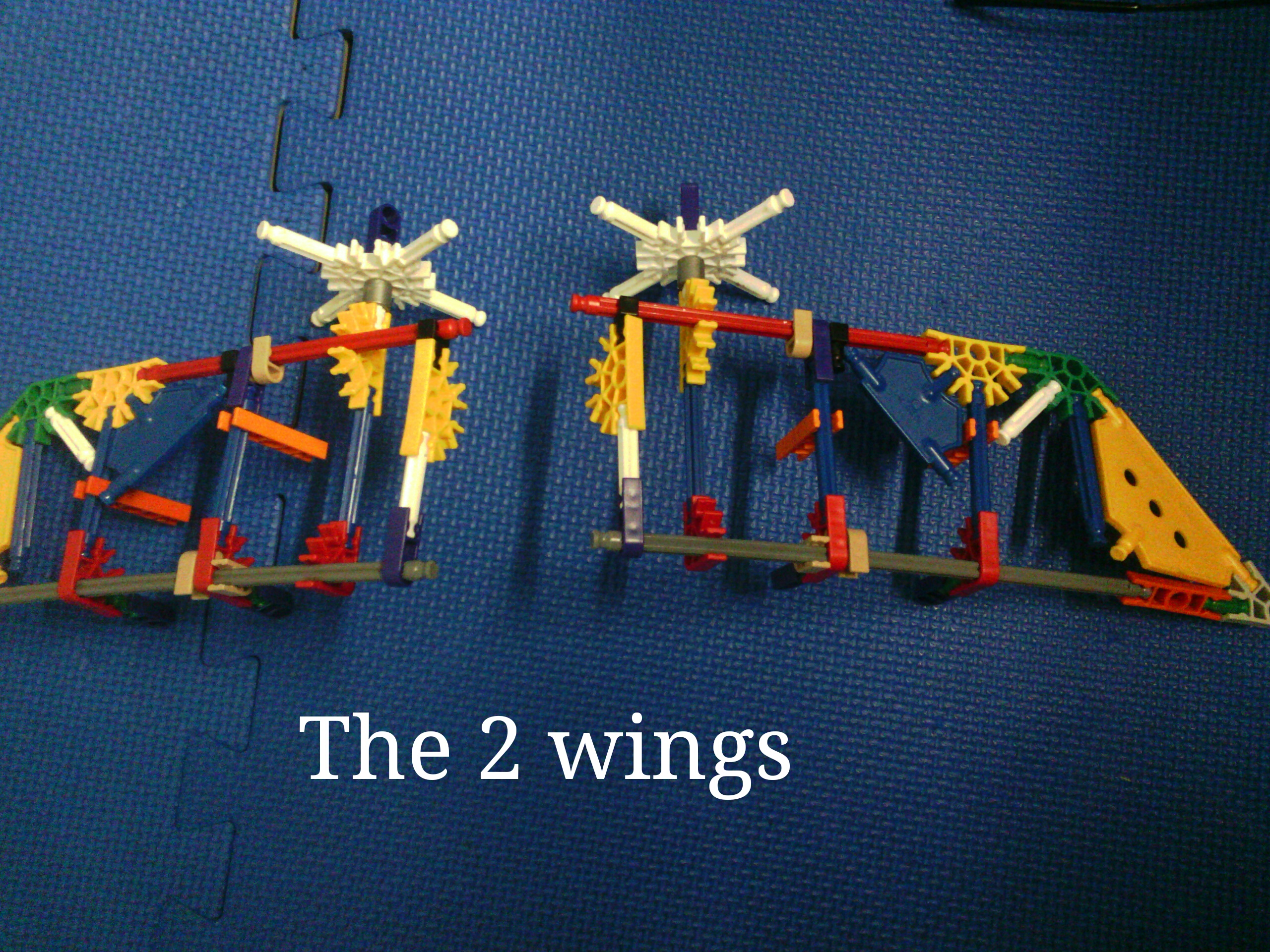 Picture of The Wings: