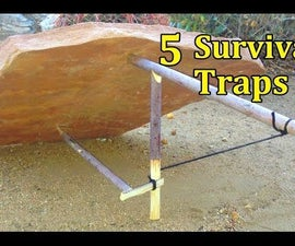 5 SURVIVAL TRAPS