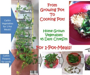 From Growing-pot to Cooking-pot