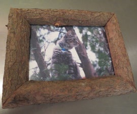 How to Make a 'Nature Frame'