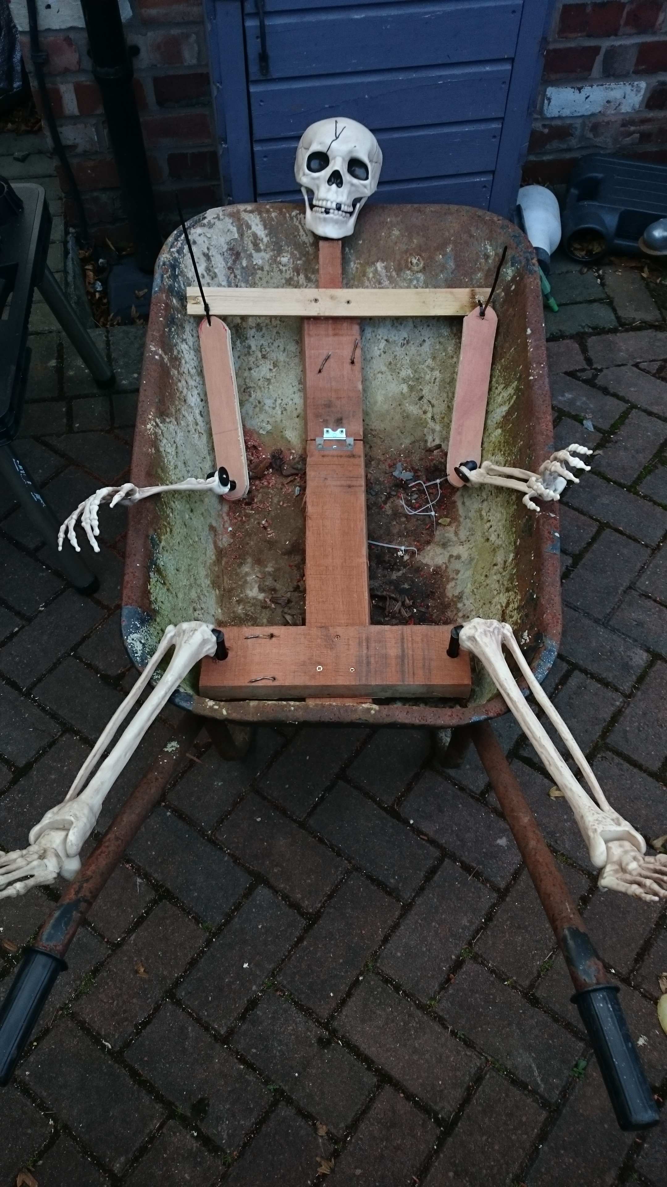 Picture of Assemble Your Skeleton