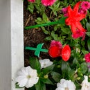 RED Hummingbird Feeders