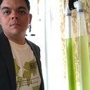 Algaescientist