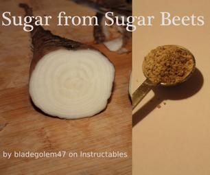 Making Sugar From Sugar Beets