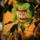 Horrific Houseplant Costumes: Ferocious Ficus and Rest In Peace Lily