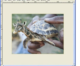 How to morph animals using GIMP (free software)