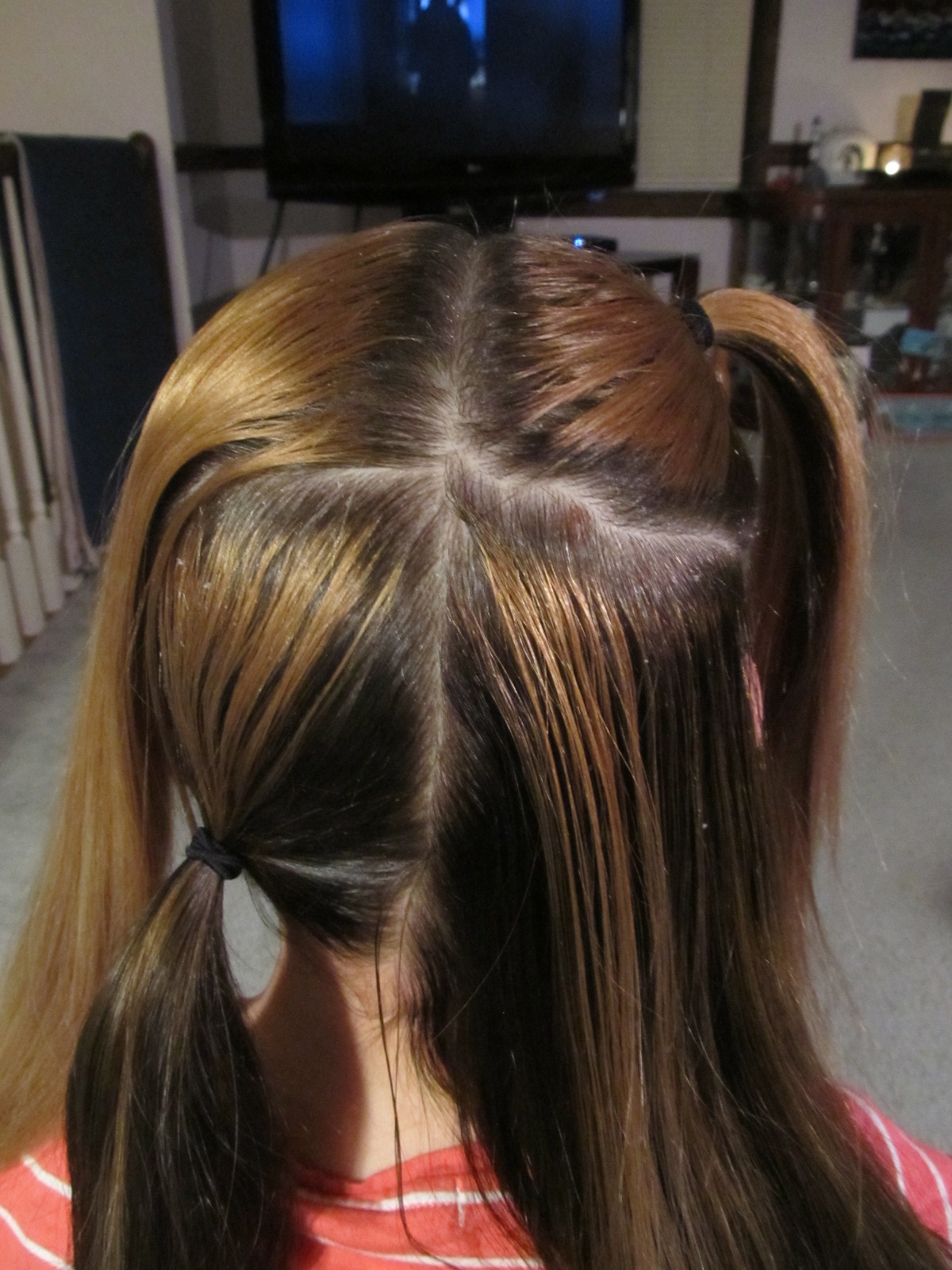 Picture of Sectioning the Hair