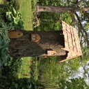 Gnome tree stump home