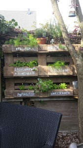 Family Herb Garden