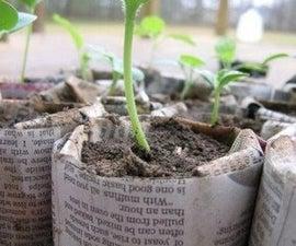 Newspaper Planters