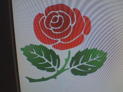 Finding the Rose Image