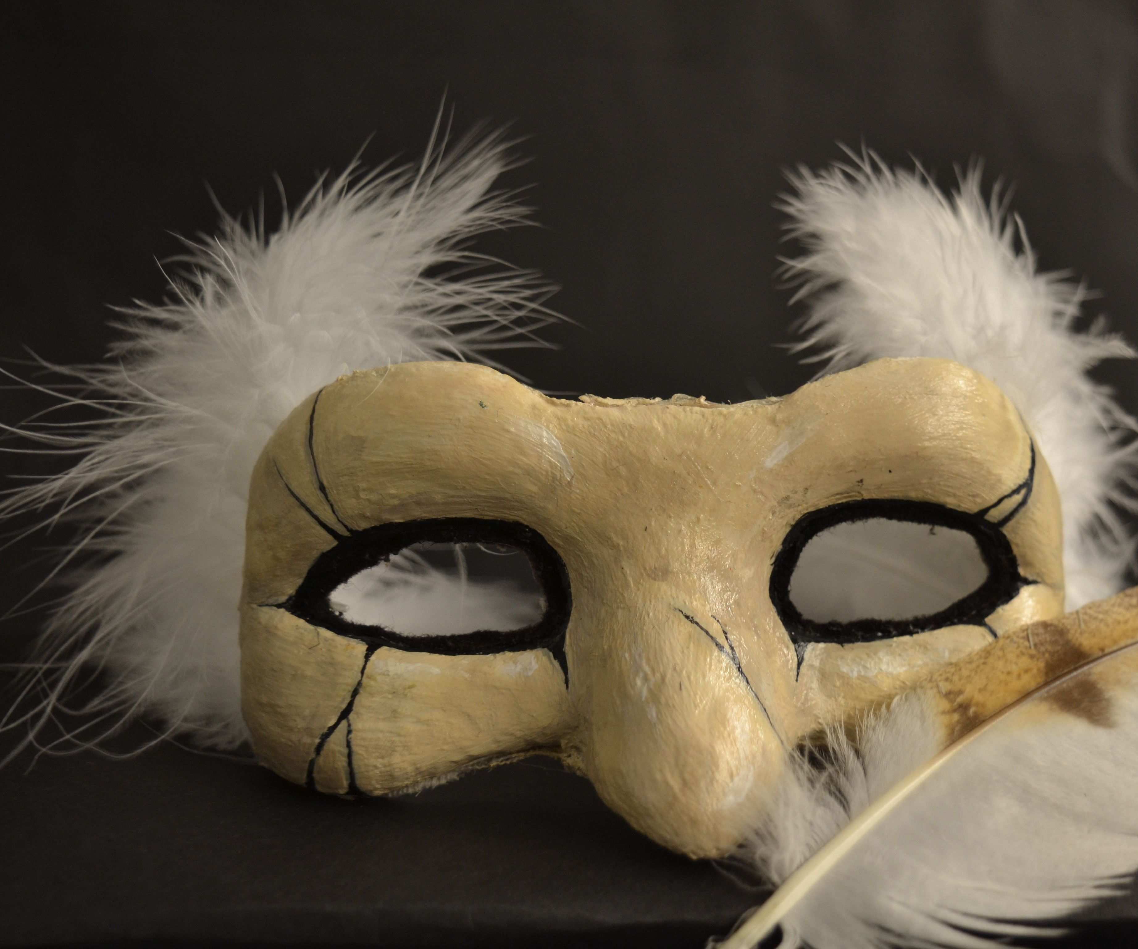 Owl Feather Eyemask