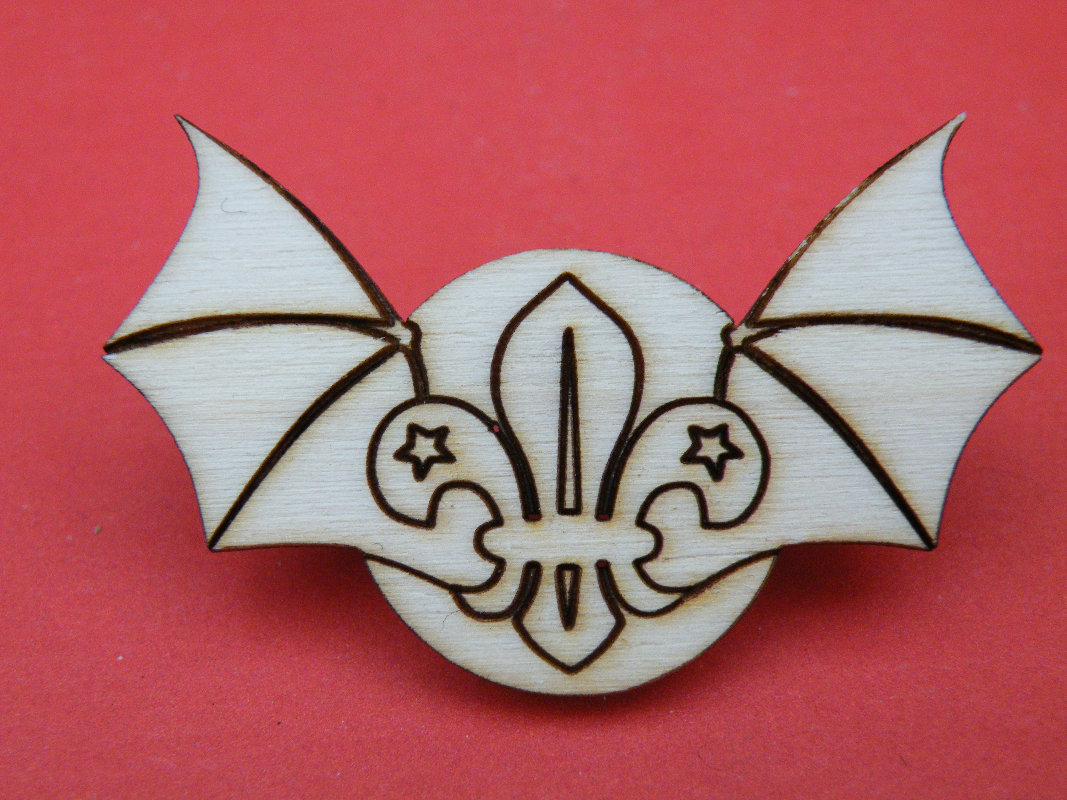 Picture of A full set of Cub Scout Badges - UPDATE