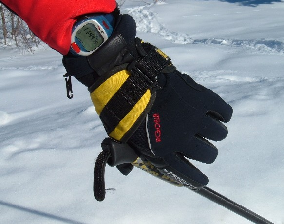 Picture of Poles and Mitts