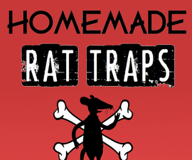 Homemade Rat Trap