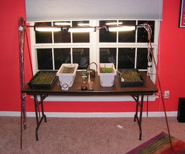 Grow Lights From Bamboo Poles and Small Fluorescent Lights