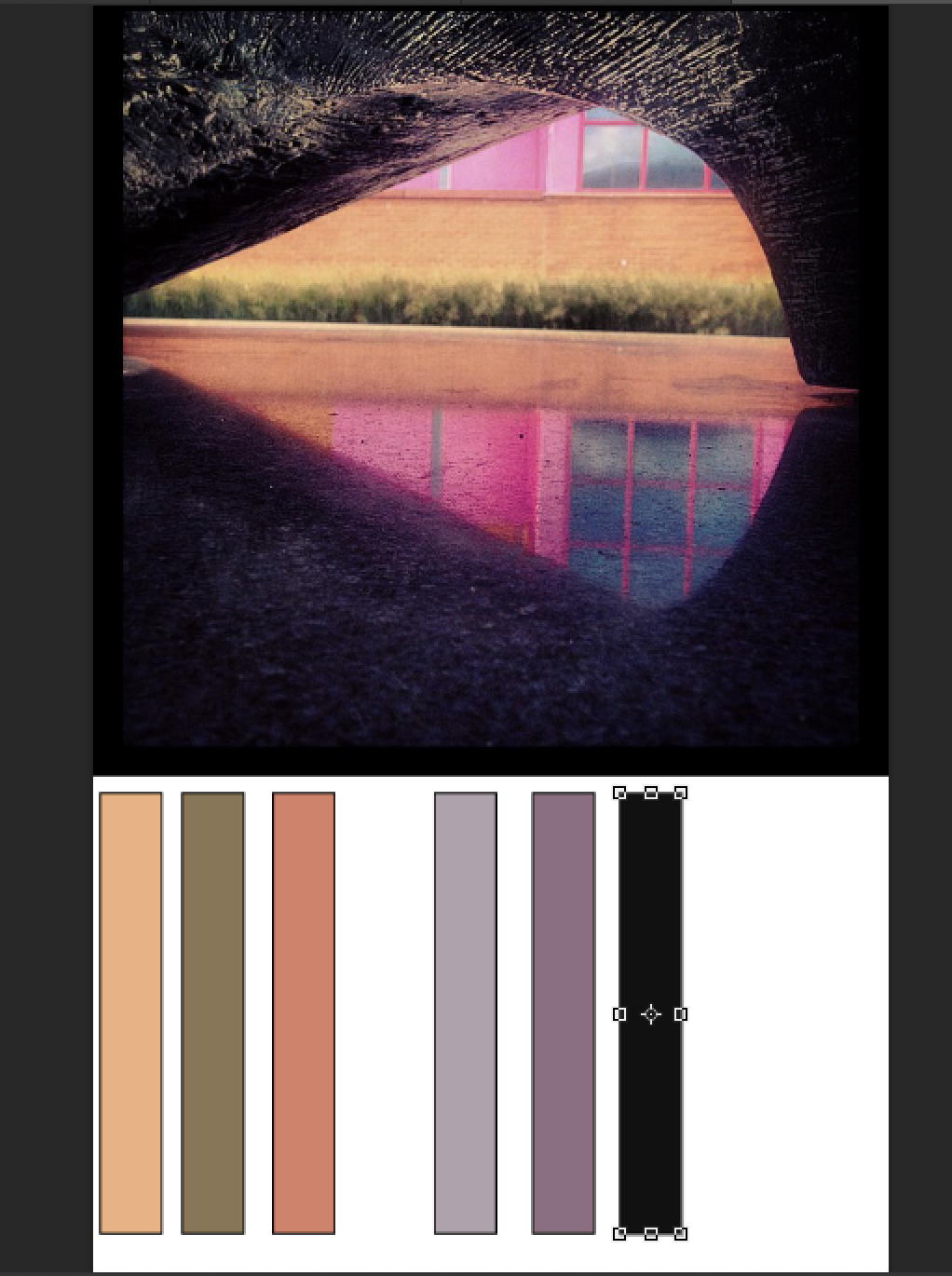 Picture of Edit Your Color Story