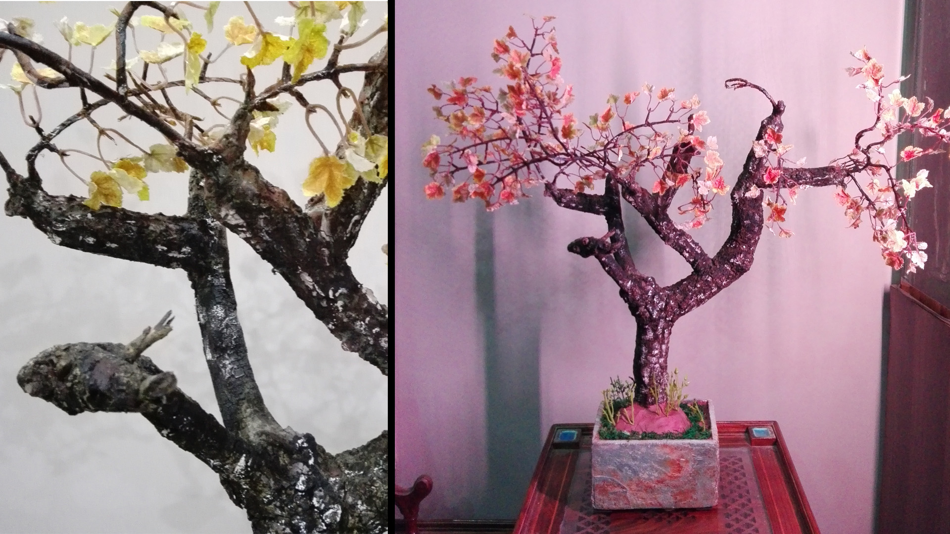 Picture of How to Make DIY Maple Tree, Old Autumn Tree ( Bonsai )