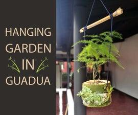 Hanging Garden in Guadua