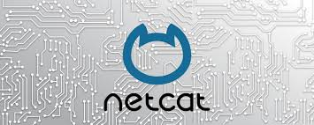 Picture of Netcat in Python