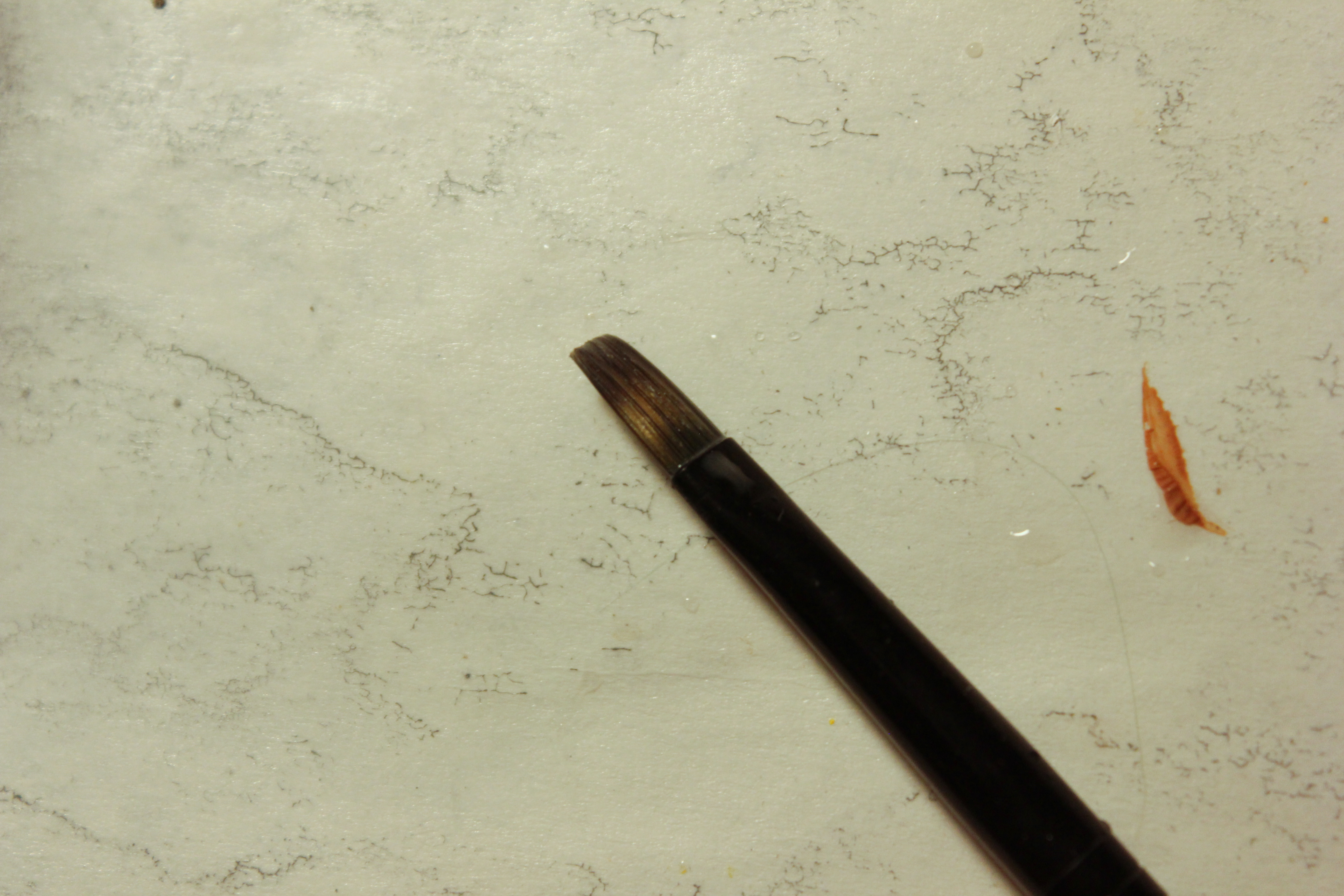 Picture of Materials: the Wood Blank, Paint, & Ribbon