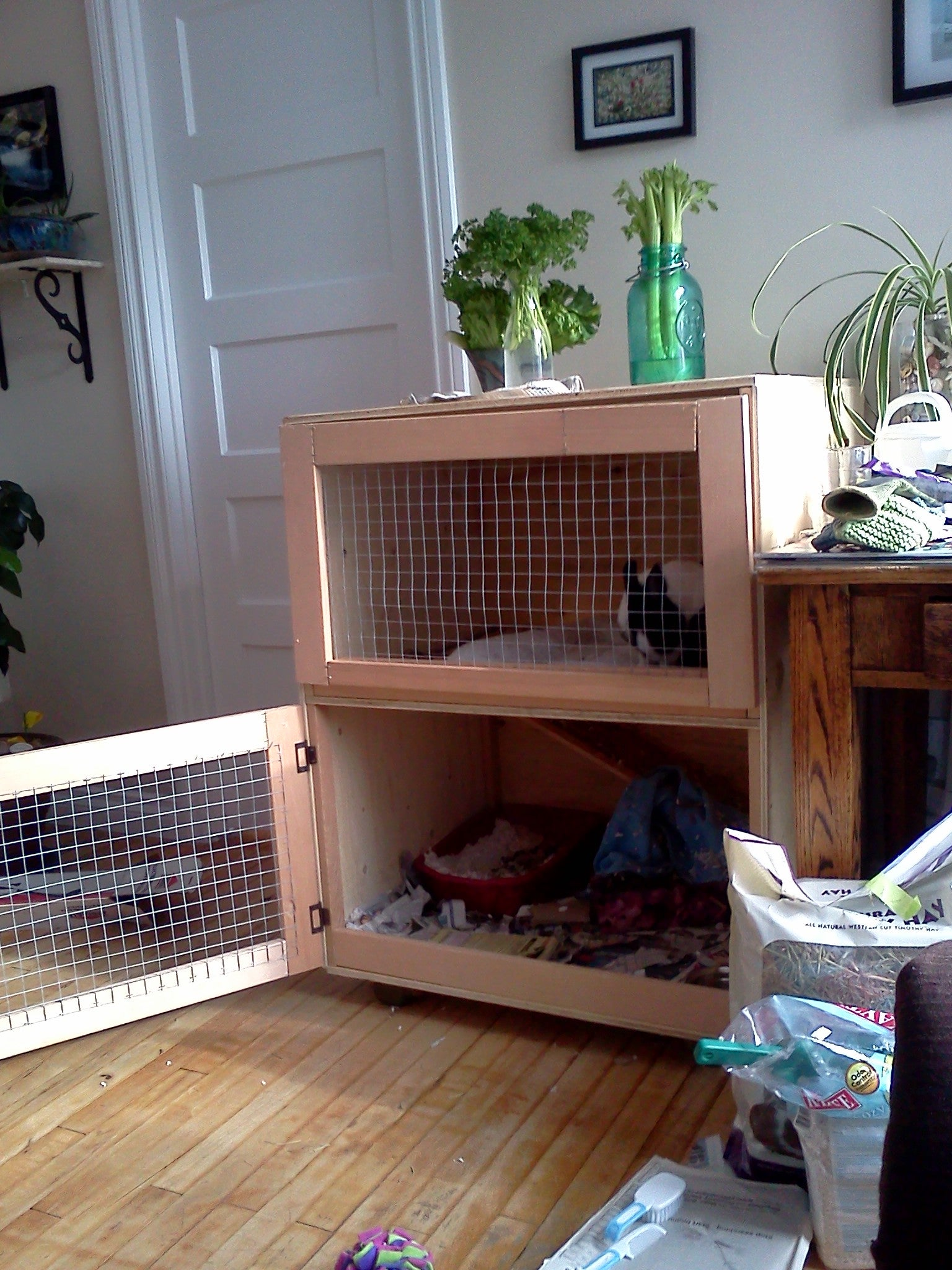 Build An Indoor Rabbit Cage 9 Steps With Pictures