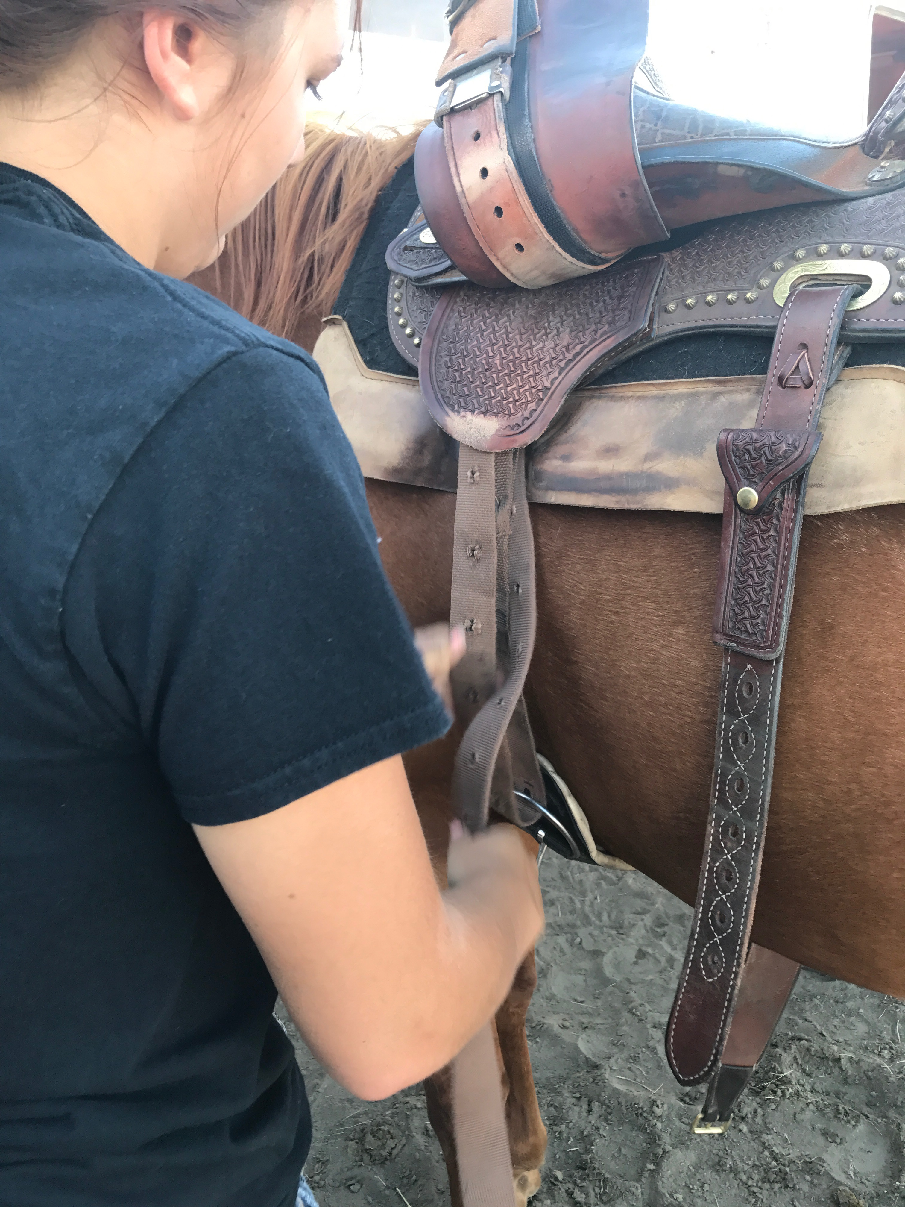 Picture of Cinching the Saddle Part 1