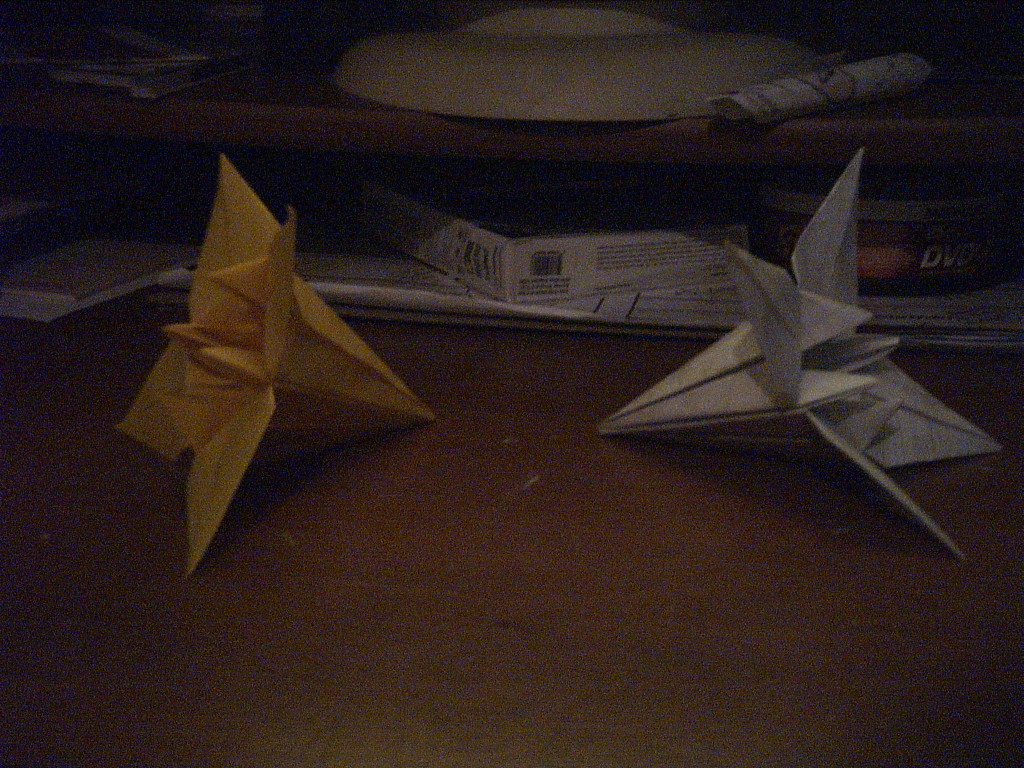 Picture of How to Make Paper Flowers