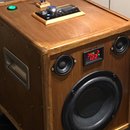 Bluetooth and Usb Audio System