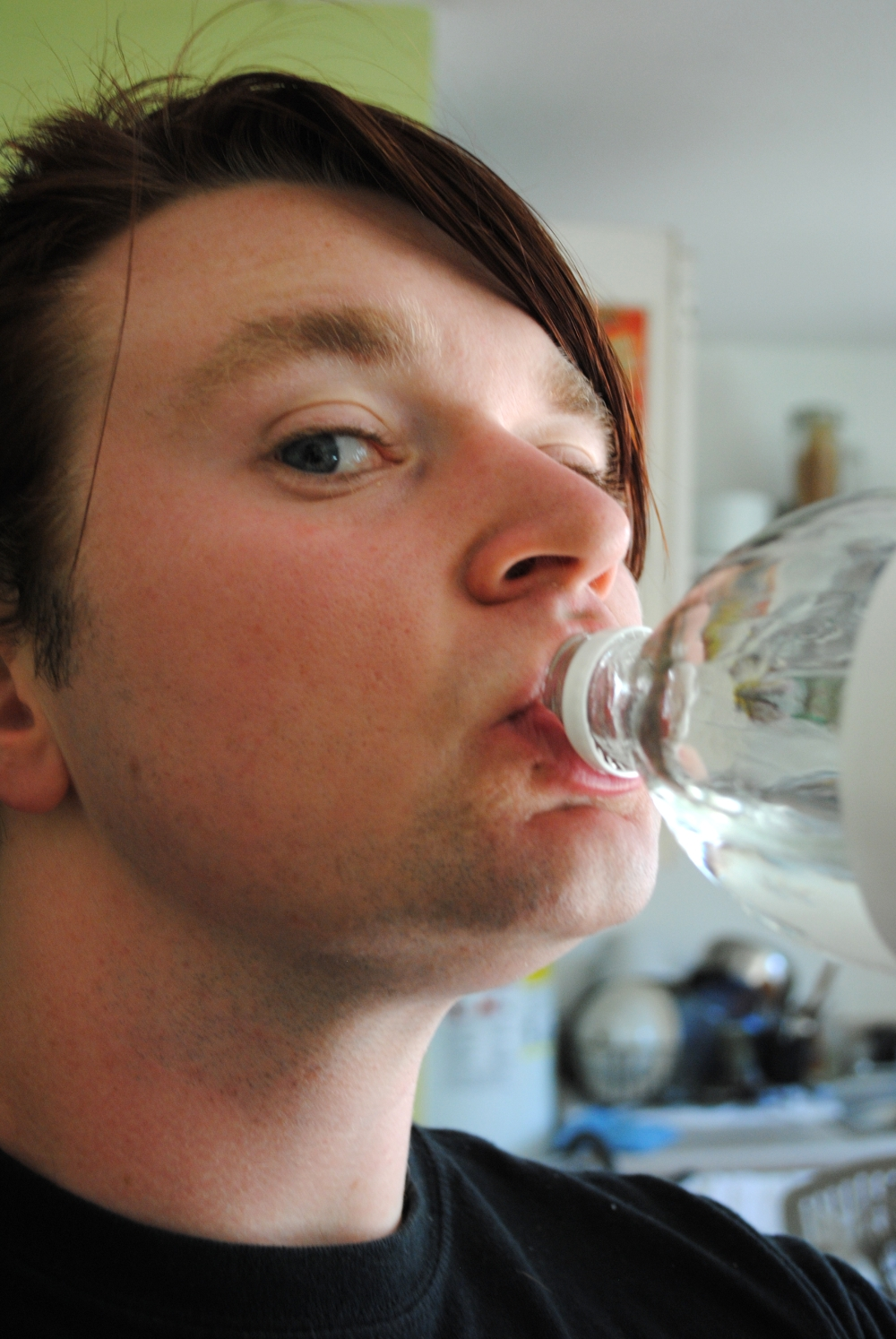 Picture of Theory 5: Drinking Vinegar for Health