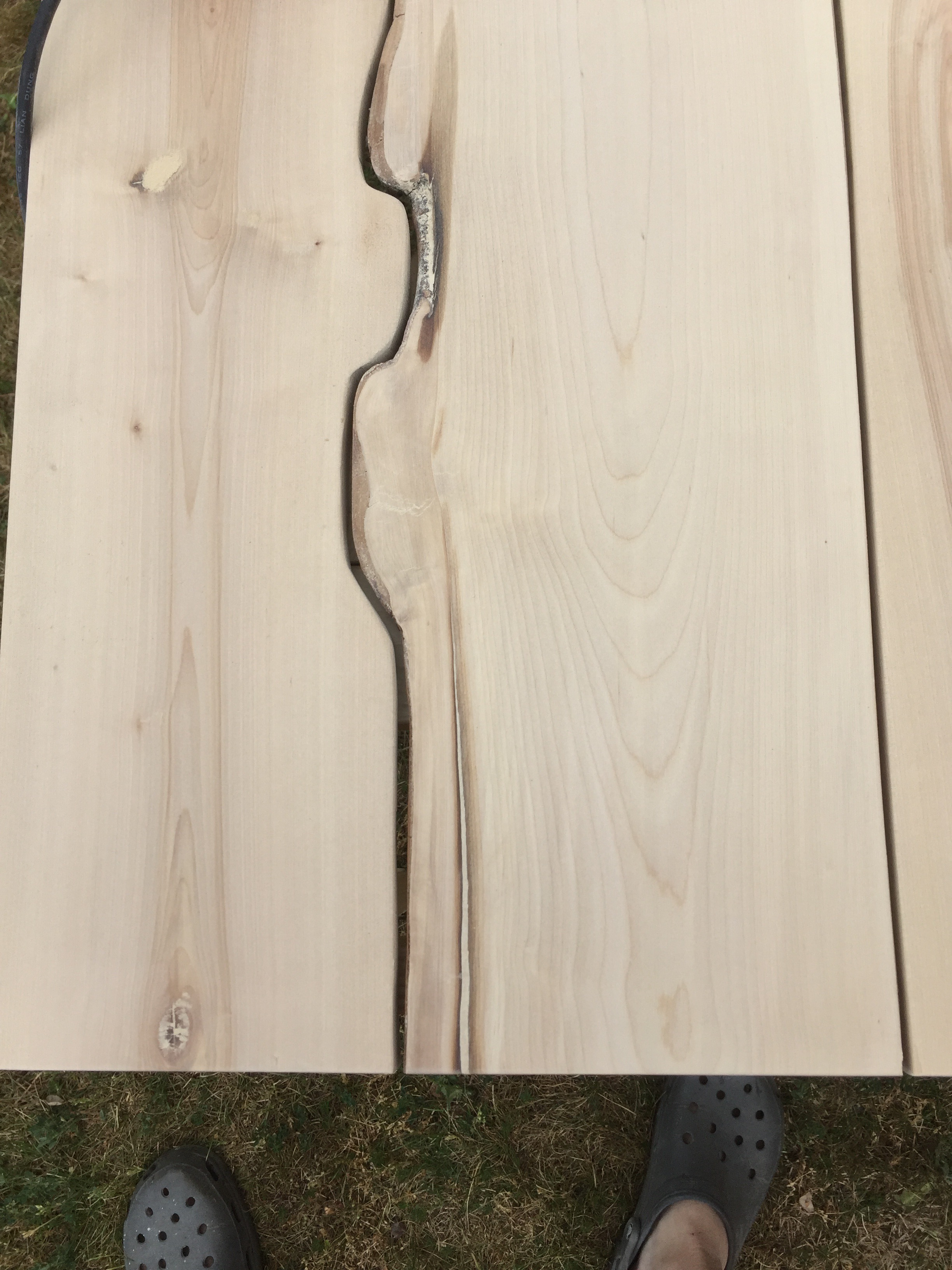 Picture of Seal and Varnish