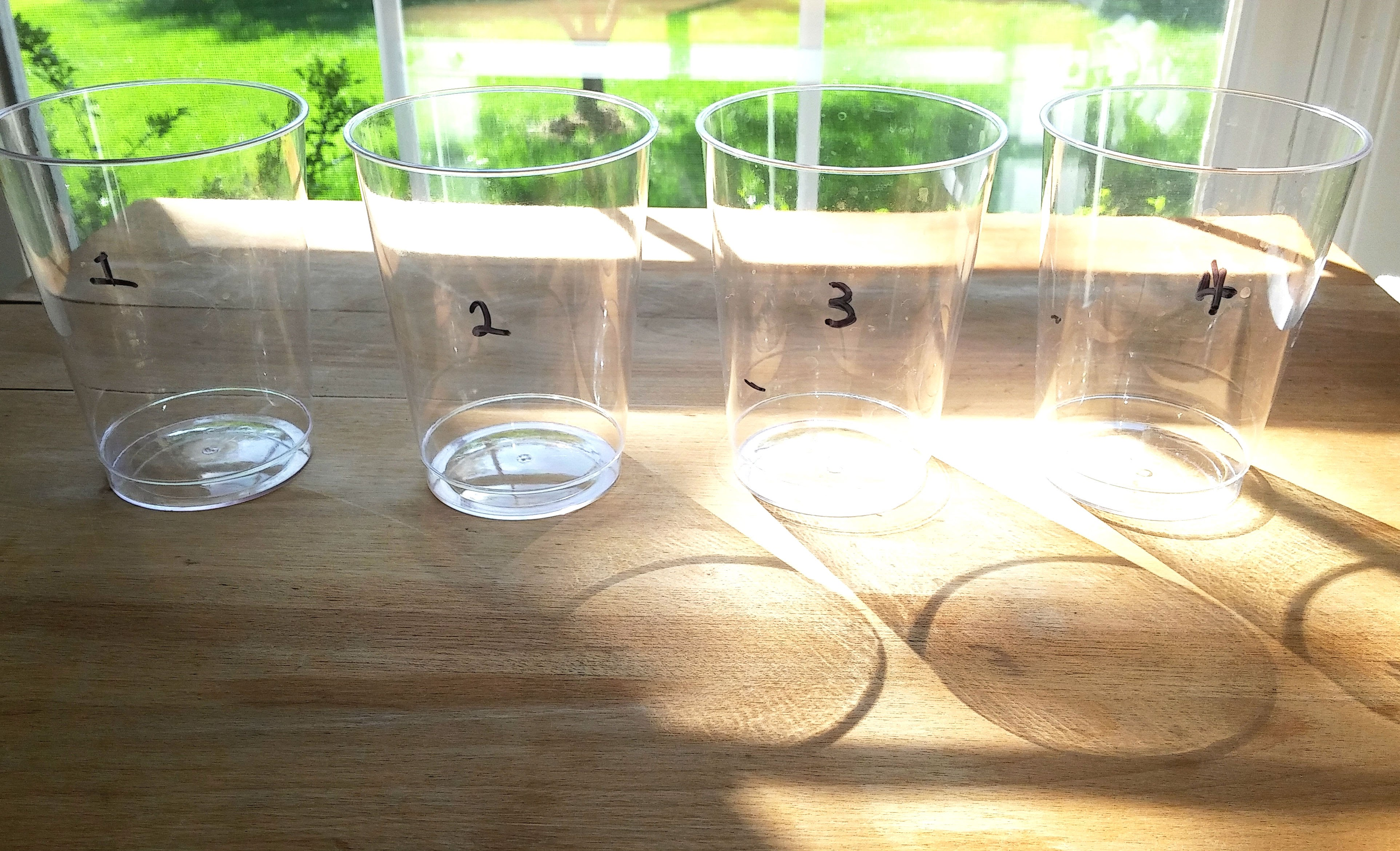 Picture of Prep Your Liquids