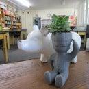Mr. Succulent