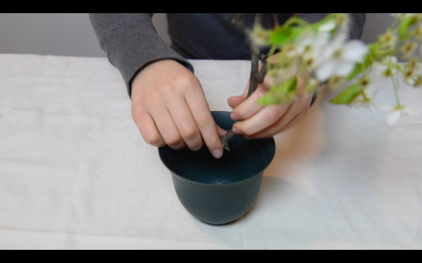 Picture of Planting a Real Branch in Money and Decorating With Cash Flowers