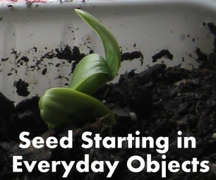 Seed Starting in Everyday Household Objects.