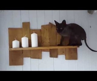 Simple Pallet Shelf