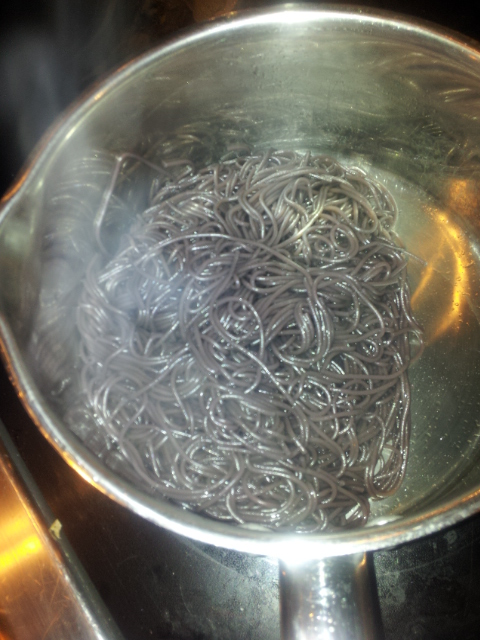 Picture of Death by Witch Hair Spaghetti Dinner