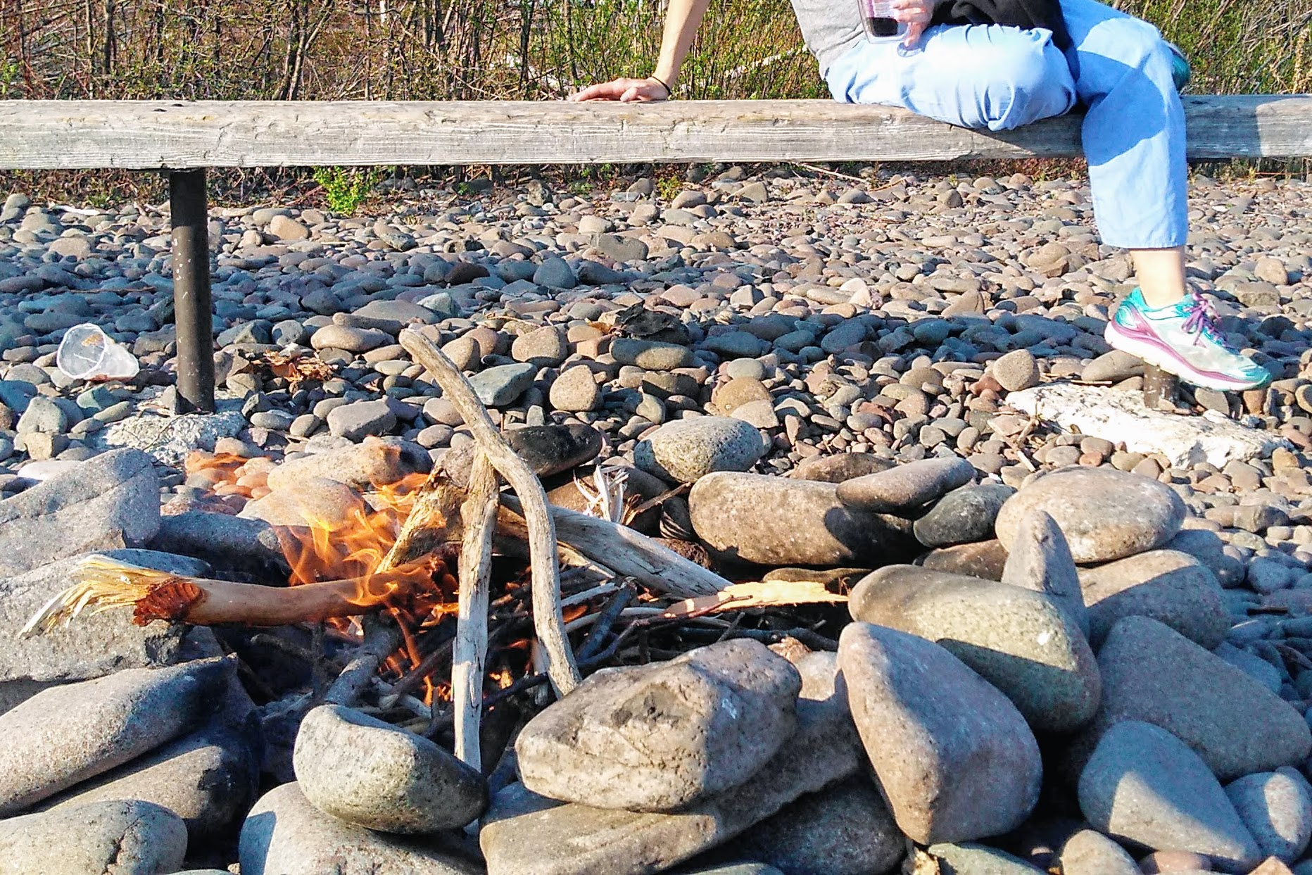 Picture of How to Build a Beach Fire