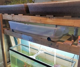 DIY Basement Aquaponics