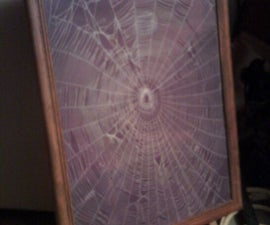 Spider Web Paintings