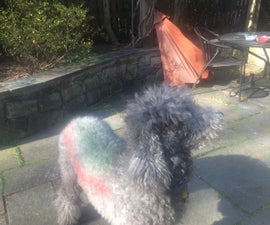 How to dye your Dog or Cat(with home made dye)!