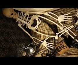 Paper Maché Skeleton
