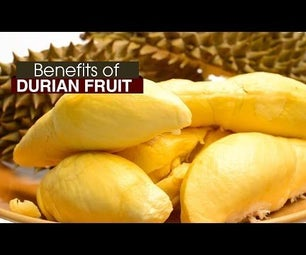 How to Utilise All the Health Benefits of the Durian Fruit?