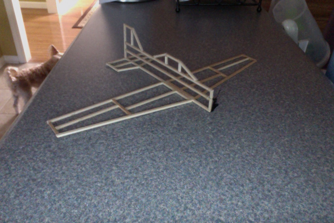 Picture of Balsa Wood Airplane