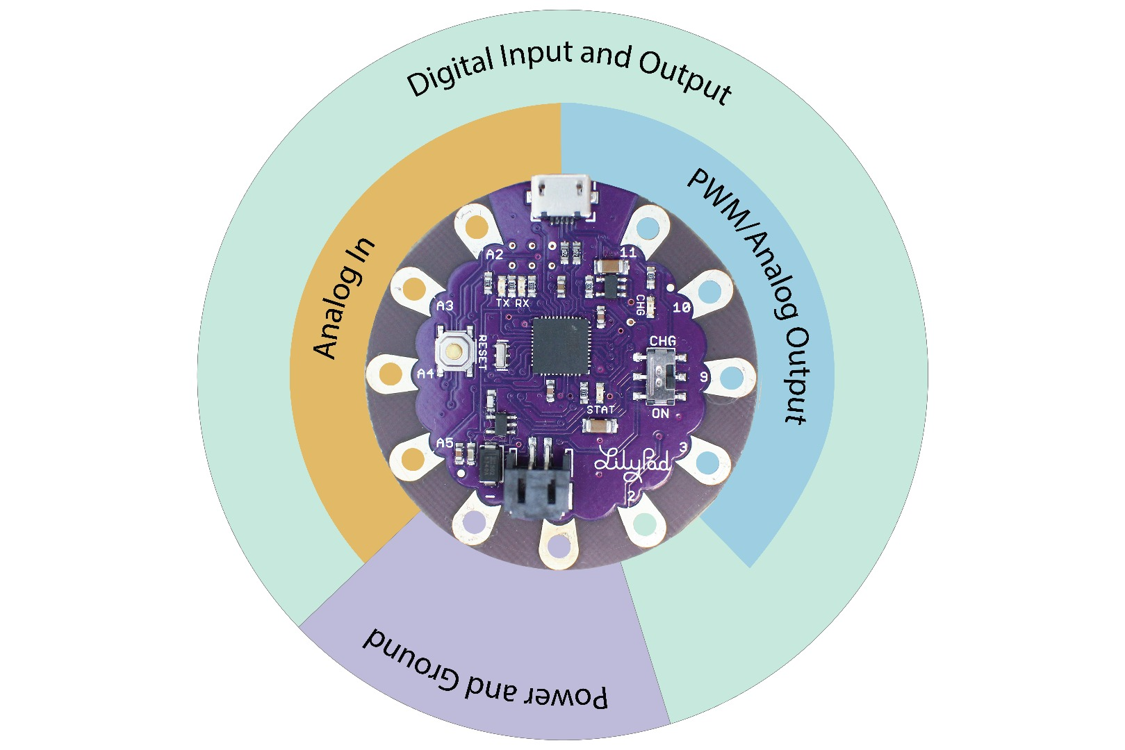 Picture of Pins of a Microcontroller