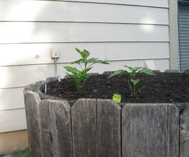 Build a Raised Bed Garden From Tires