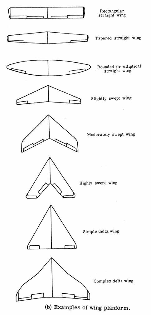 Picture of Wing and Tail Design