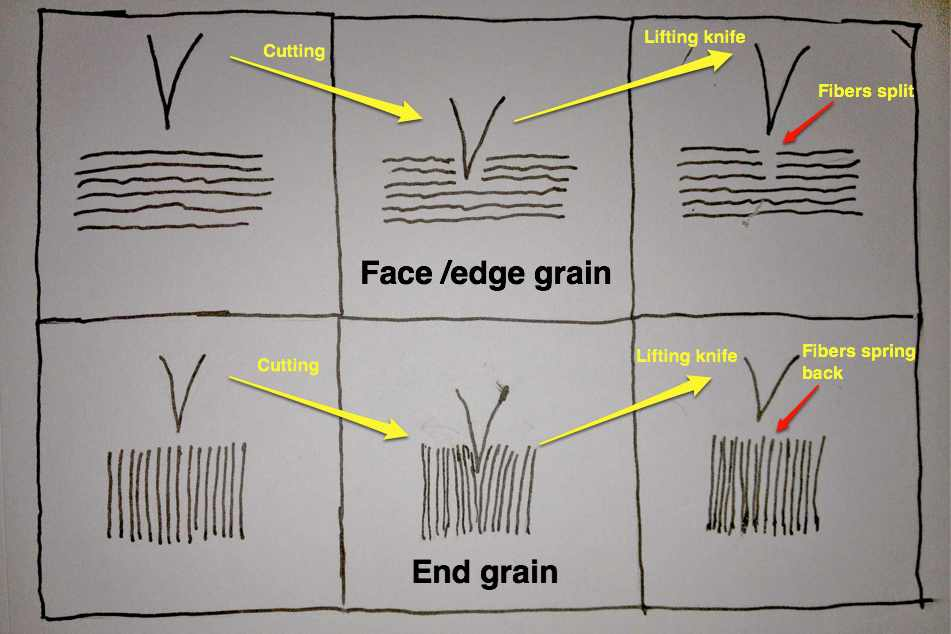 Picture of Why End-grain?