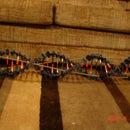 Big knex DNA