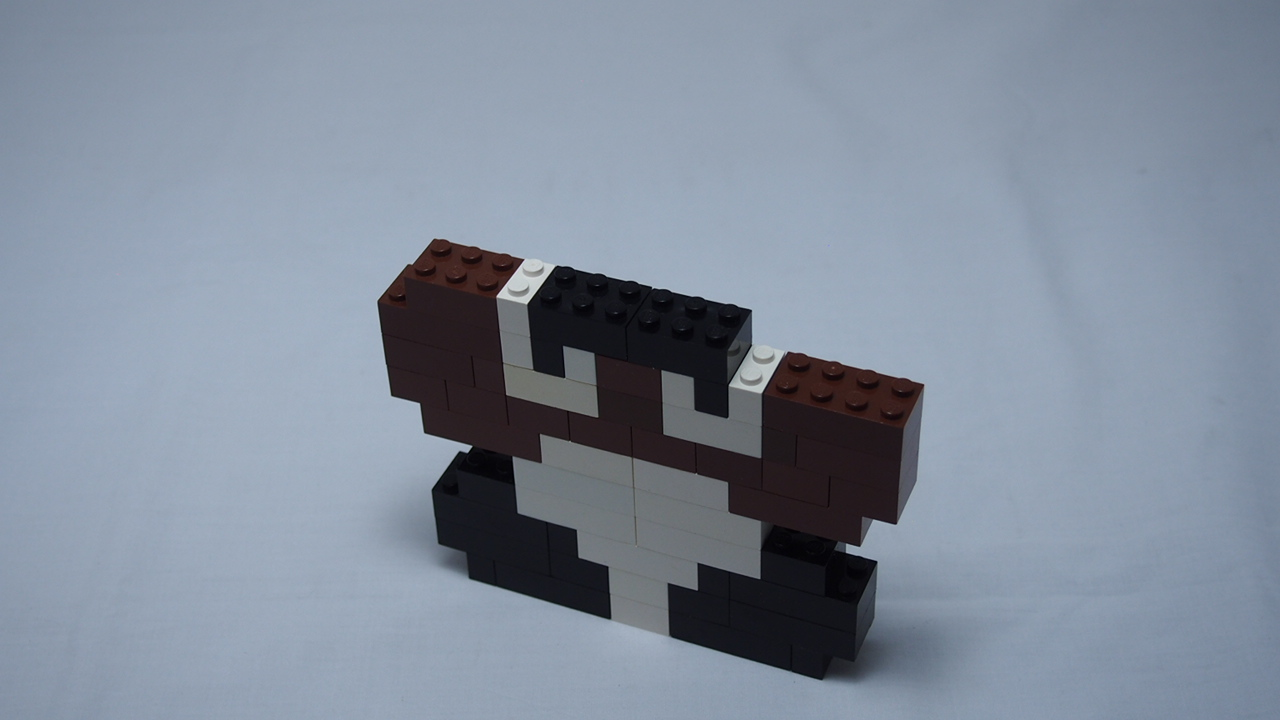 Picture of Goomba Part 1